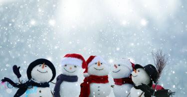 Hóemberek világnapja